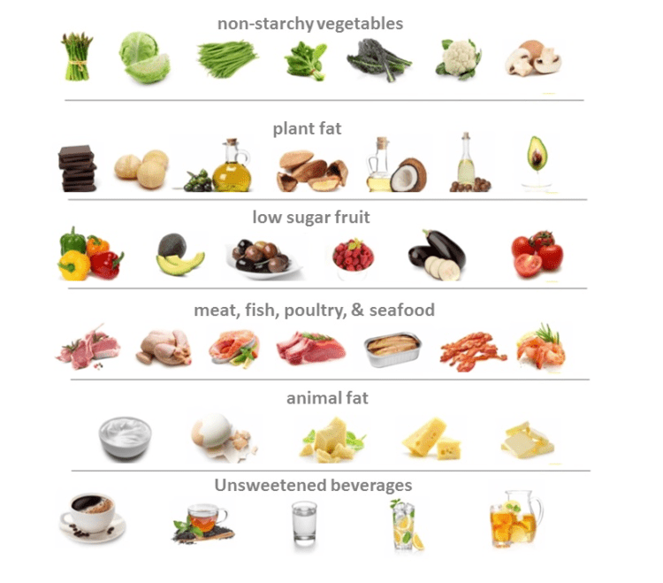 Healthy Foods High In Protein And Fat