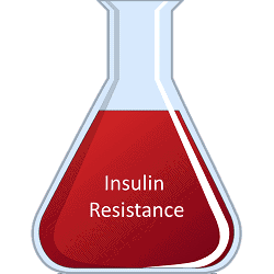 Part 2: How is Insulin Resistance Measured?