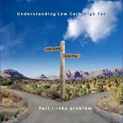 Part I – Understanding Low Carb High Fat – the problem