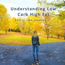 Part II- Understanding Low Carb High Fat – the solution