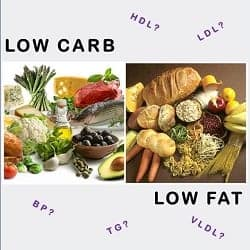 Low Fat Calorie Restricted Diet versus Low Carbohydrate Diet – a two year study