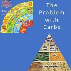 PART 1: The Role of Protein in the Diet – the problem with carbs