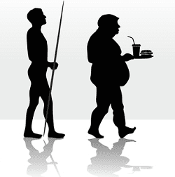 PART 2: The Role of Protein in the Diet – Evolutionary Exposure to Macronutrients