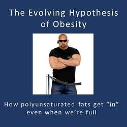 PART 2 of 2: The Evolving Hypothesis of Obesity – how polyunsaturated fat makes us fat