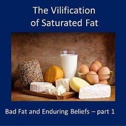 Vilification of Saturated Fat – Bad Fat Enduring Beliefs Part 1