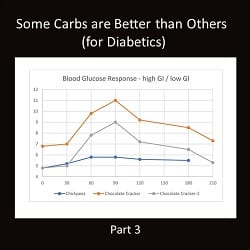 Some Carbs are Better than Others (for Diabetics) – Part 3