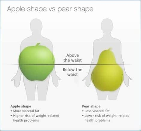 Science made simple archives the low carb high fat dietitian apples versus pears ccuart Image collections