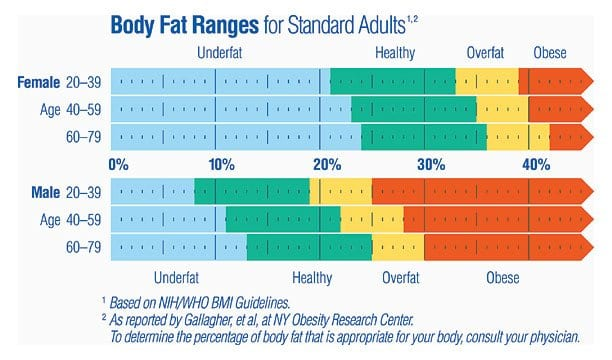 Body Fat Ranges For Standard S