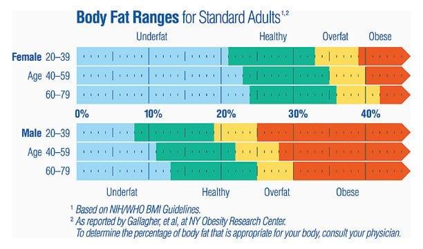 A New Estimator Of Whole Body Fat Percentage