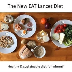 The New EAT Lancet Diet – a healthy & sustainable diet for whom?